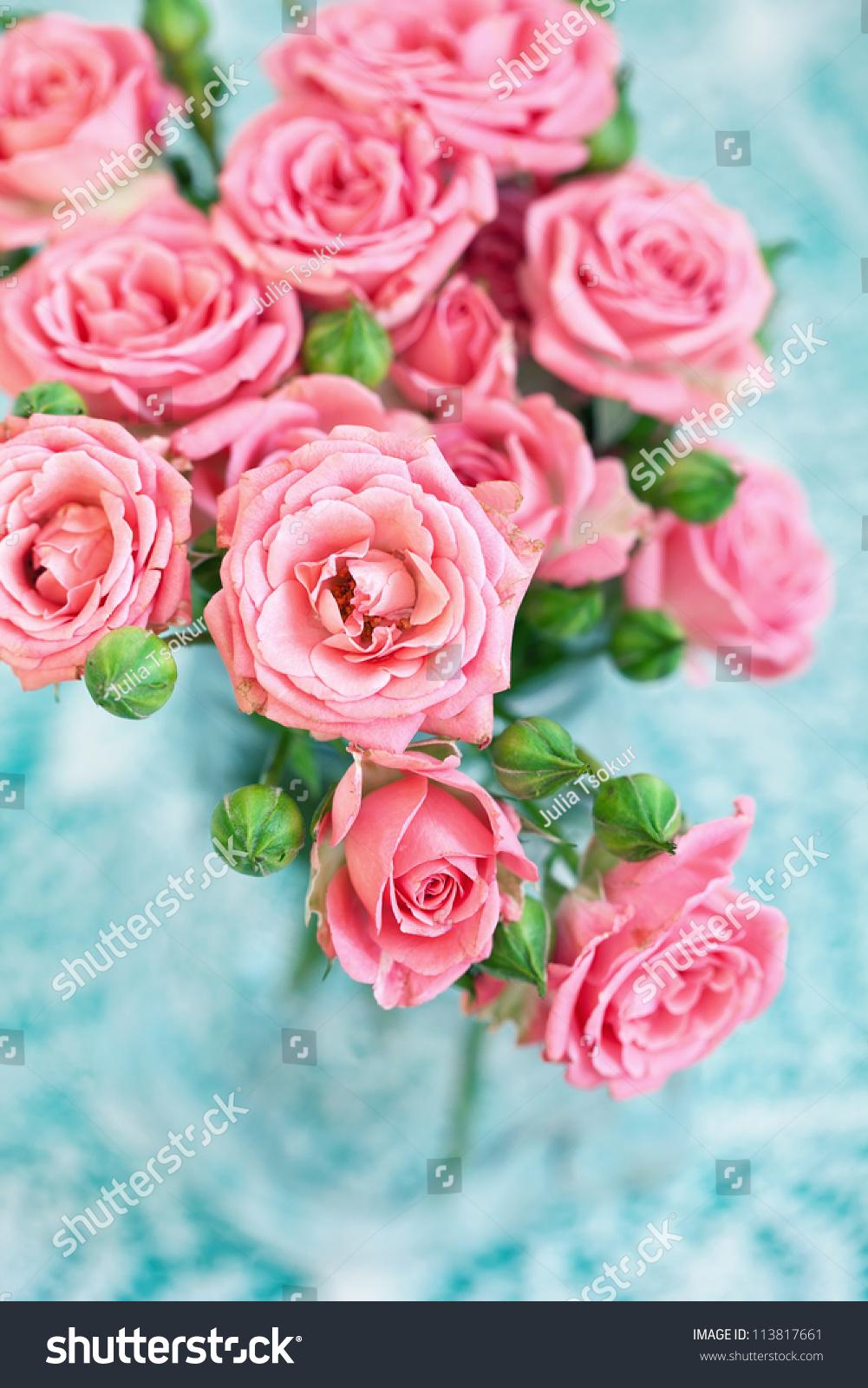 微信头像风景玫瑰