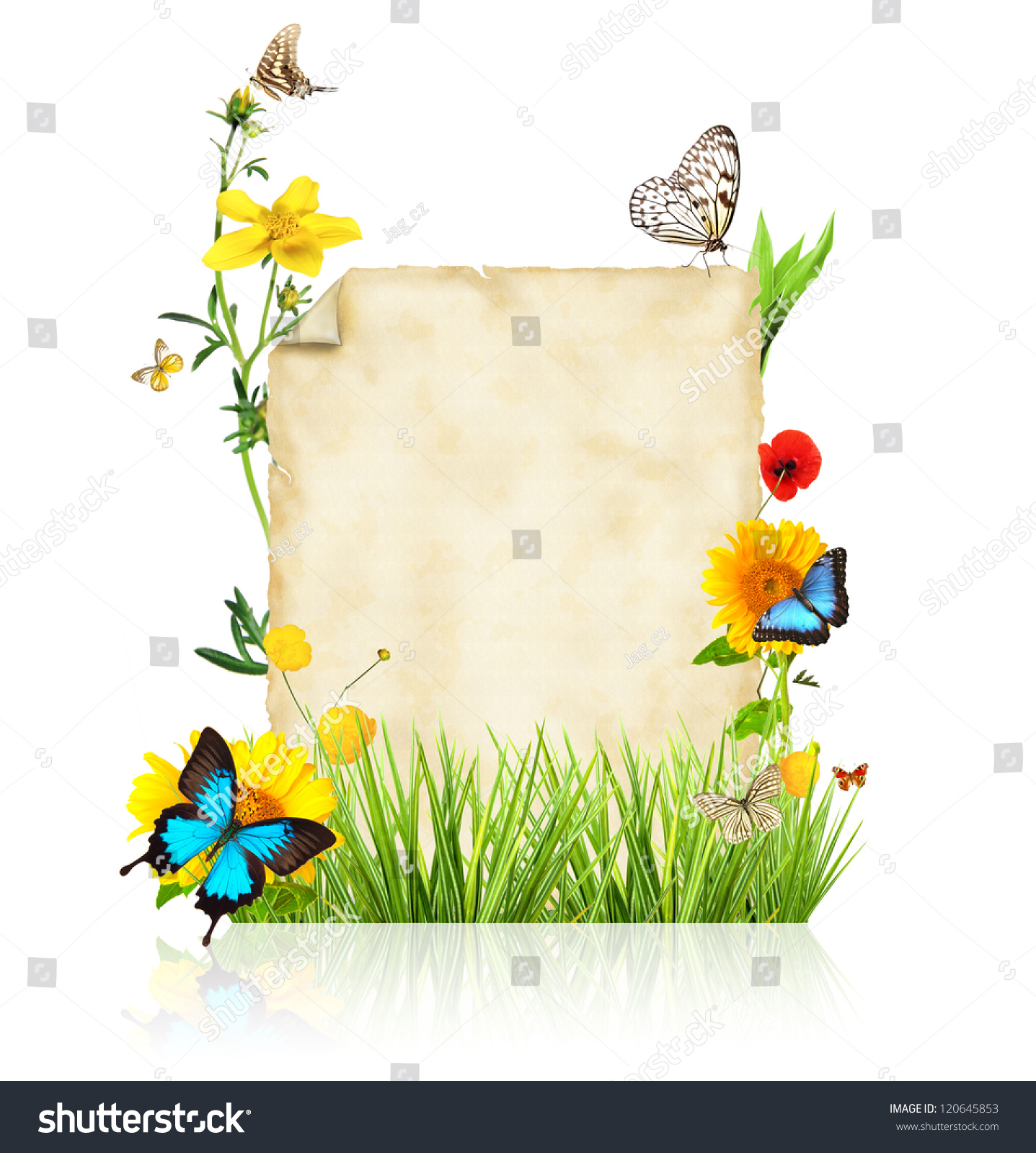 ppt 背景 背景图片 边框 模板 设计 相框 1437_1600
