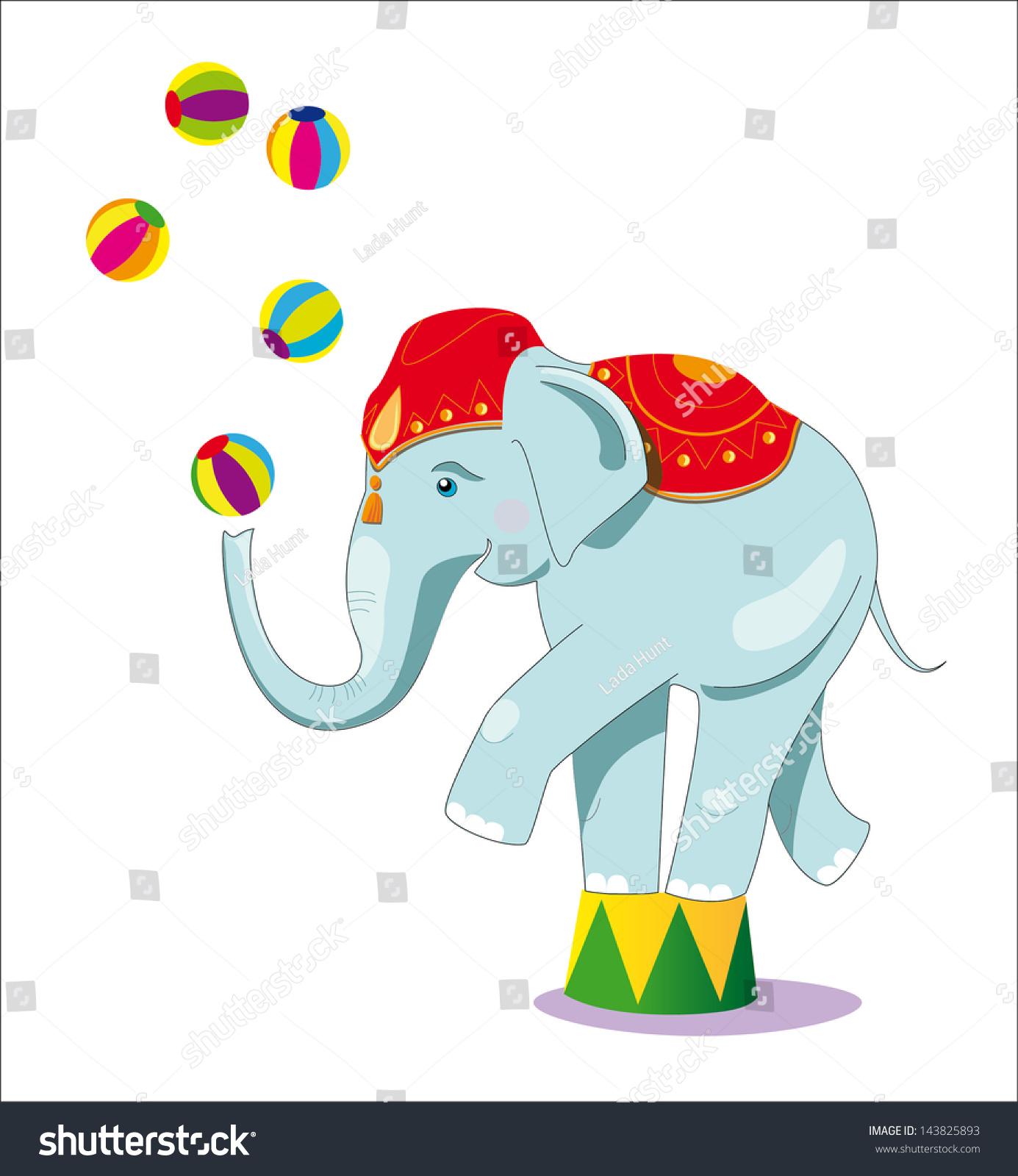 马戏团的大象是杂技演员