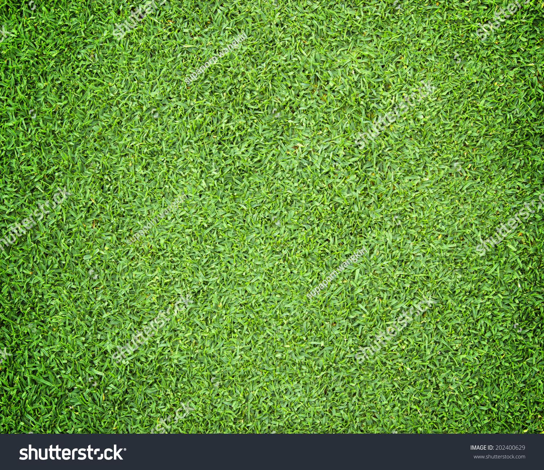 草皮足球场背景绿地-背景/素材,公园/户外-海洛创意()