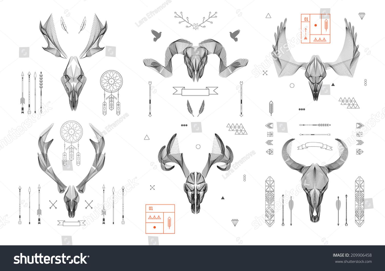 抽象动物背景艺术线条.头骨集合.鹿角.向量.孤立.
