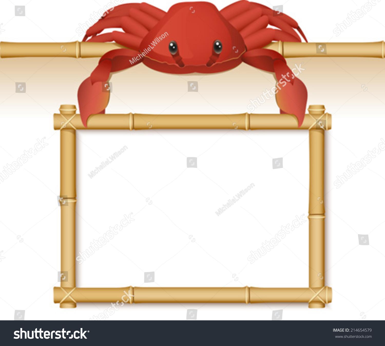 一只可爱的蟹吊在一个空的竹架-动物/野生