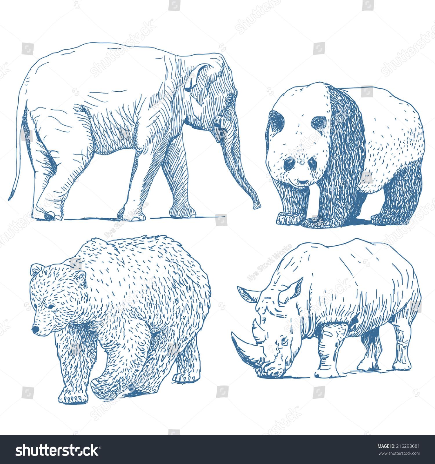 动物图纸集孤立在白色背景:大象,熊猫,熊,犀牛-动物