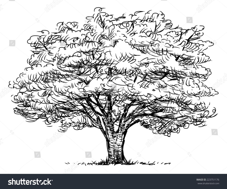 儿童手绘t恤大树