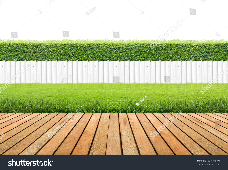 草坪和木地板对冲和白色栅栏隔离