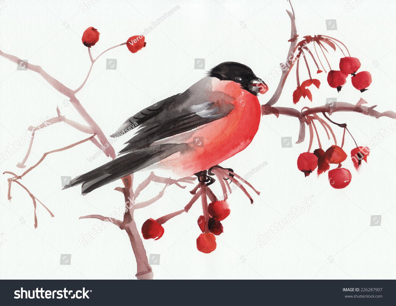 水彩原画树枝上的红腹灰雀.亚洲风格.-动物/野生生物