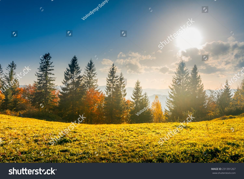 丰富多彩的秋天的风景.喀尔巴阡山脉
