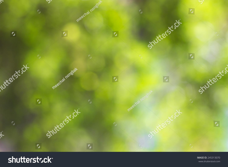 摘要绿色自然背景散焦模糊的散景光-背景/素材
