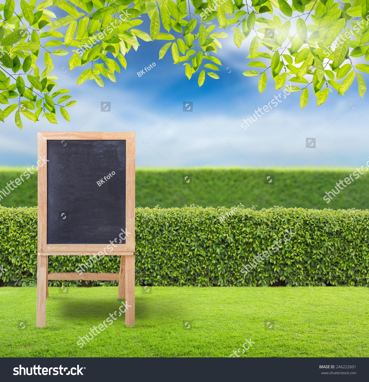 木地板和花园背景的空白黑板