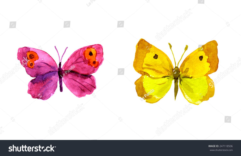 幼儿园蝴蝶主题网络图