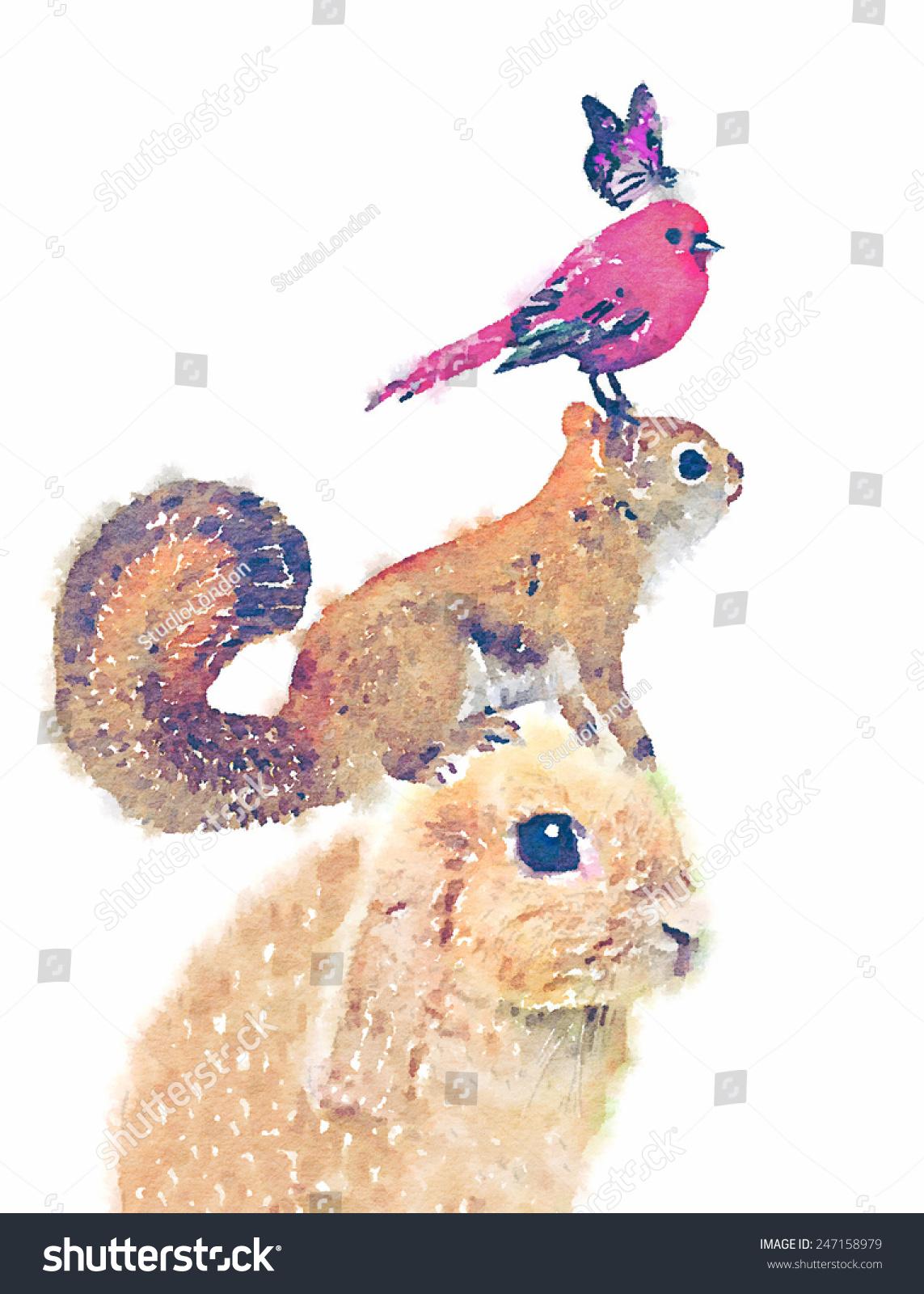 插图兔/红松鼠/水彩画/蝴蝶插图/ t恤图形/可爱的鸟类