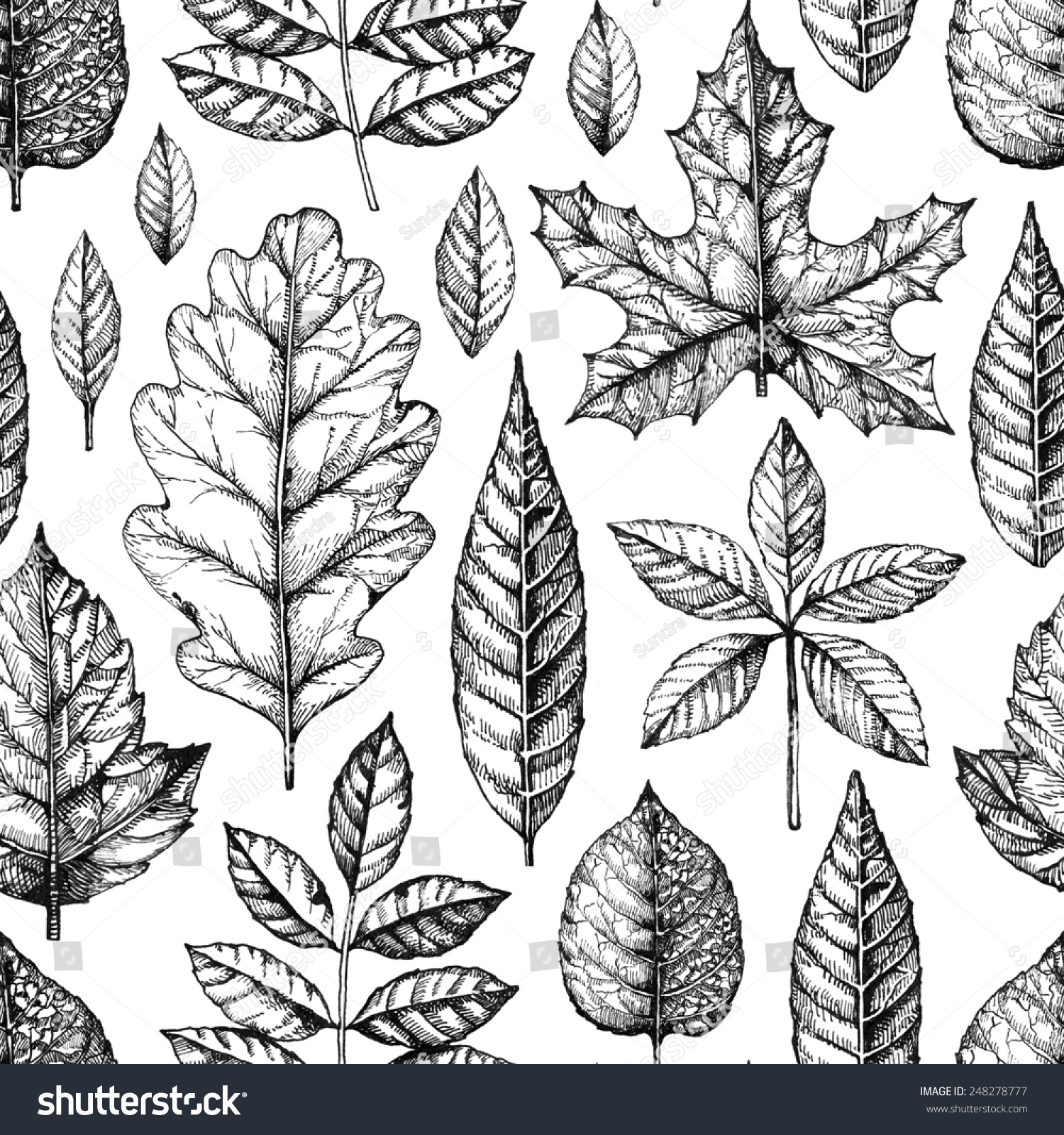 无缝模式树叶画-背景/素材,自然-海洛创意(hellorf)-.