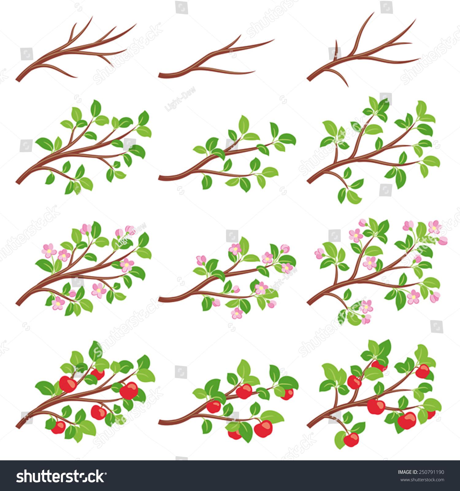 苹果树枝在不同季节-自然,抽象-海洛创意(hellorf)--.