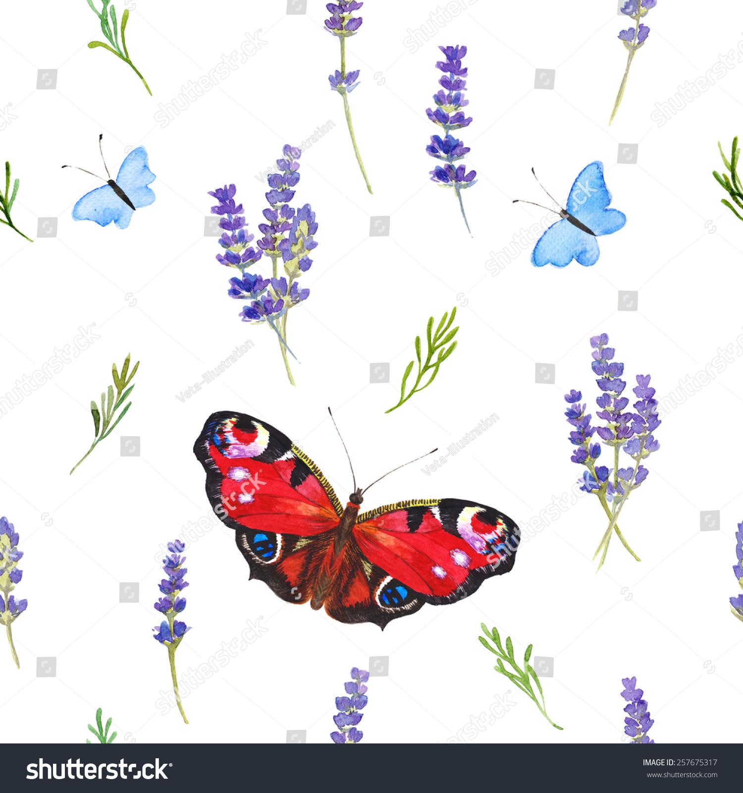 蝴蝶.手画的颜色