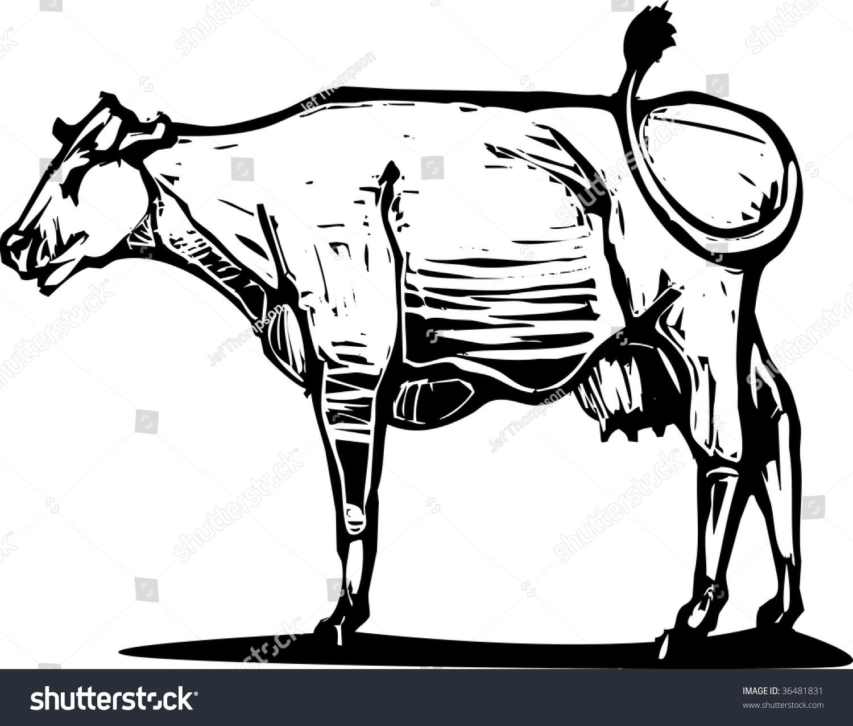 手绘保护动物的广告词