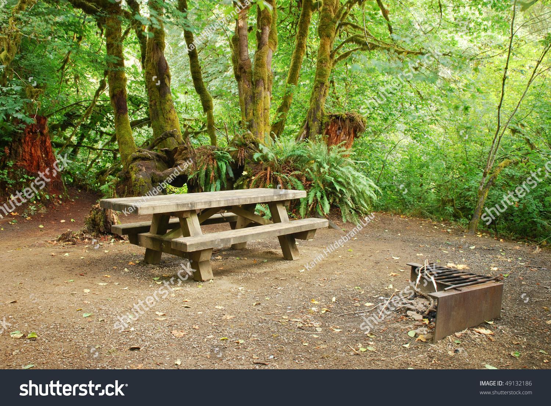 野餐桌和烧烤坑森林营地在俄勒冈州-公园/户外,自然