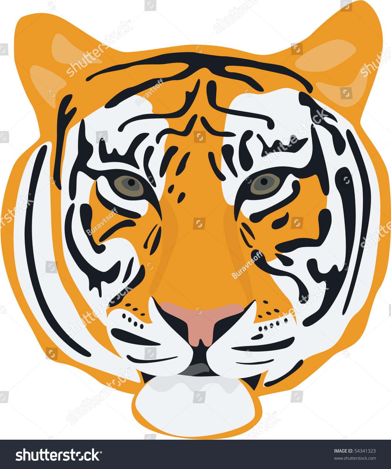 老虎头孤立在白色的