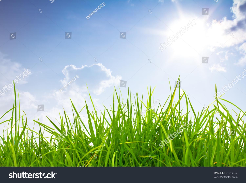 绿色的草和蓝色的天空-背景/素材