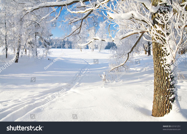 2016微信头像风景冬天