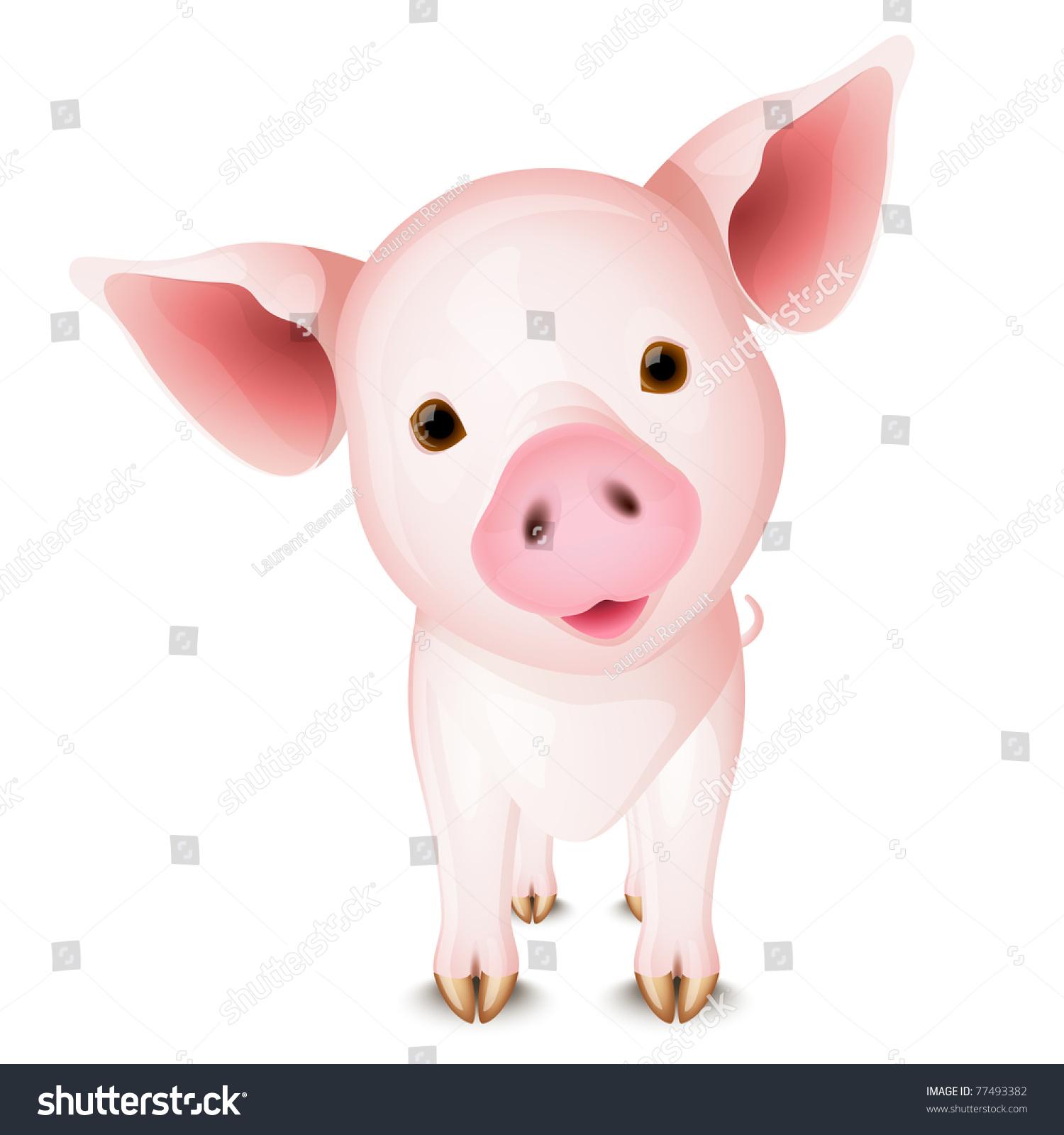 白底的粉红猪-动物/野生生物,交通运输-海洛创意()-合