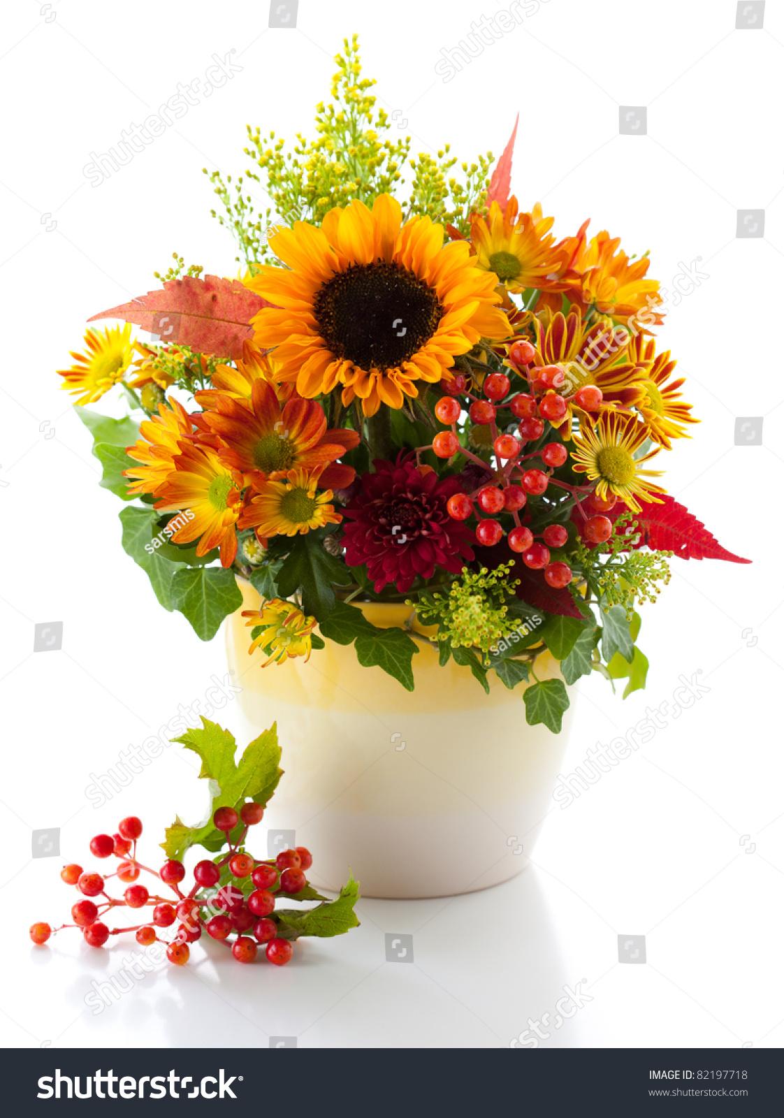 静物画秋天的花和浆果白色背景